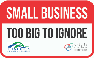 Small Business Too Big To Ignore campaign launched by Chamber network